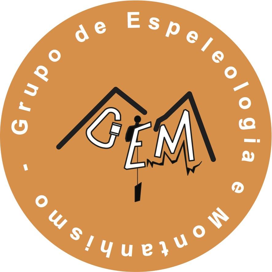 Logo GEM 2007
